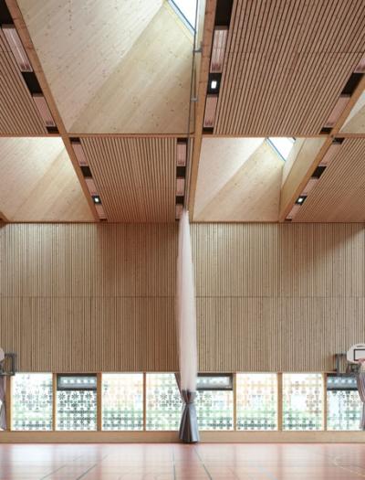 Sporthalle Alice Milliat in Lyon von Dietrich | Untertrifaller Architekten