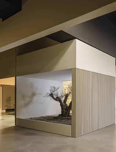 Vibia Showroom in Barcelona von Francesc Rifé Studio