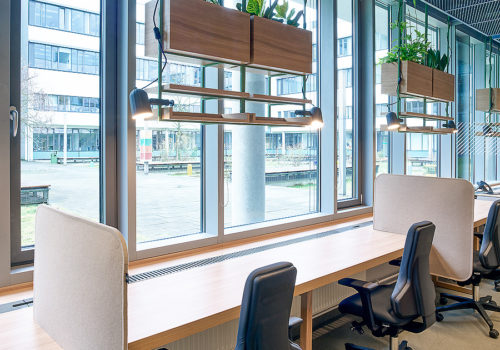 Neugestaltung der Büroräume für Dewpoint in Dresden 05