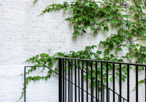 Neugestaltung der Außenanlagen eines Stadthauses in New York 07