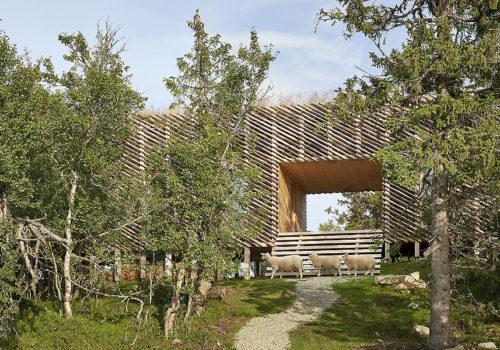 Berghütte Skigard Hytte Cabin in Norwegen 03