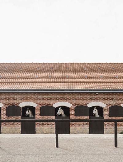 Gestüt in Nordfrankreich von Atelier Serge Joly