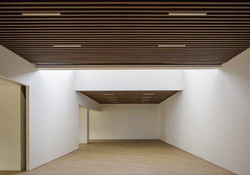 Alpex Cultural Centre in Scionzier 10