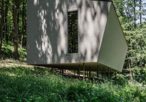 Cabin Moss in Ungarn 01