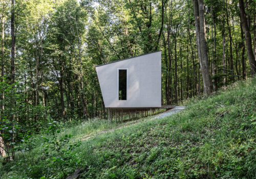 Cabin Moss in Ungarn 02