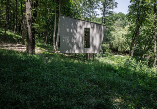 Cabin Moss in Ungarn 03