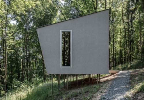 Cabin Moss in Ungarn 06