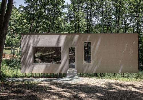 Cabin Moss in Ungarn 07