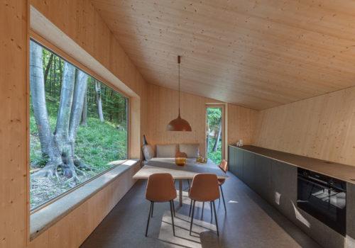 Cabin Moss in Ungarn 10