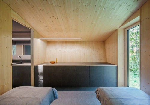 Cabin Moss in Ungarn 15