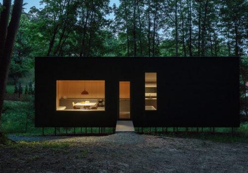 Cabin Moss in Ungarn 18