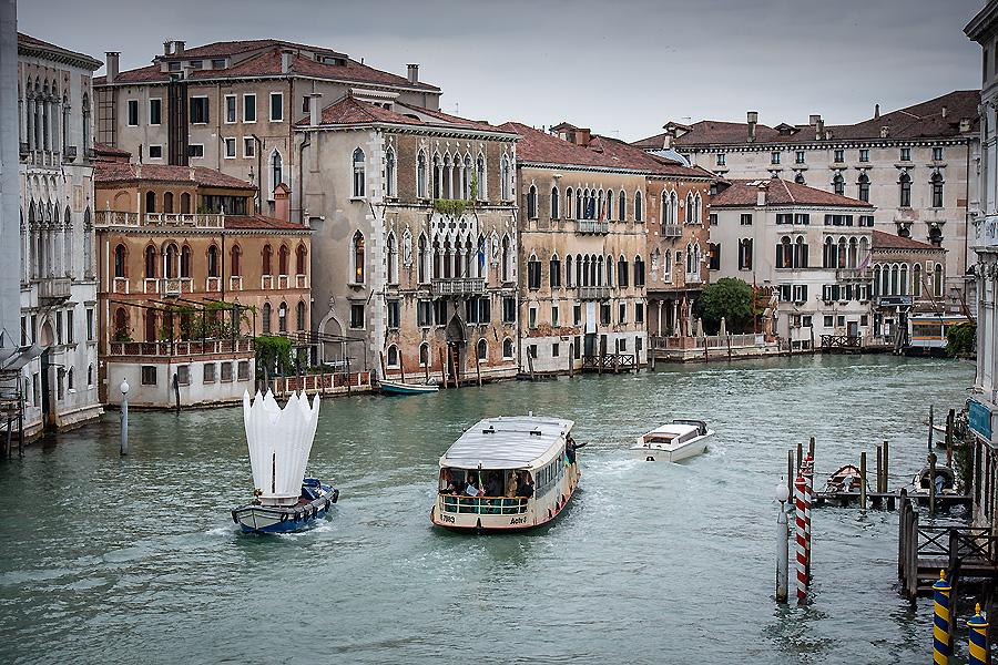 Flower House in Venedig 01