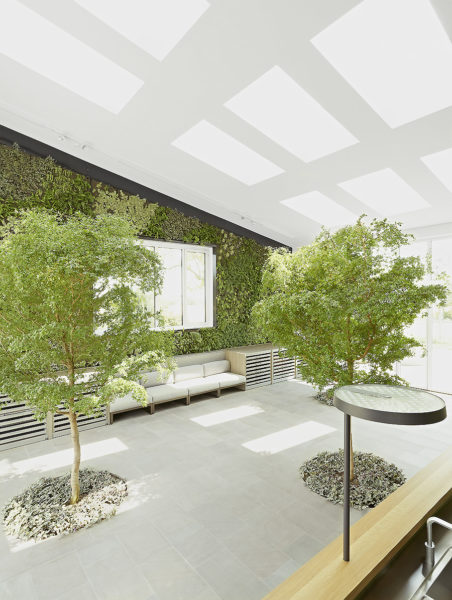 Neubau Büro-, Empfang in Wiesbaden 01