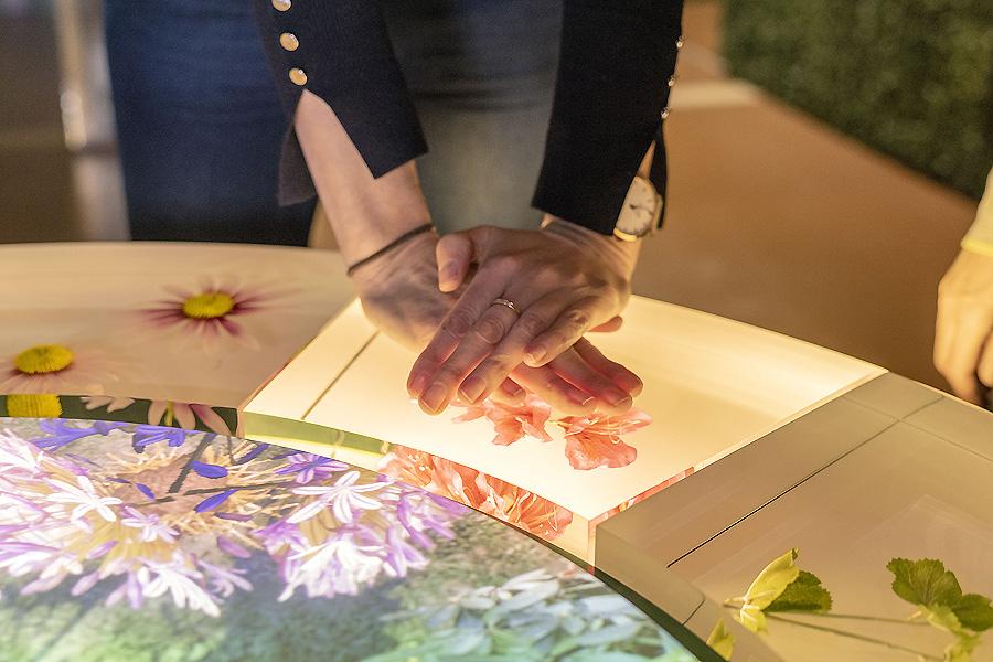 Ausstellung The Story of Gardening in Somerset von Kossmanndejong